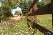 09-aspen-magazine-horse-ranches