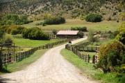 12-aspen-magazine-horse-ranches